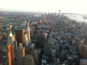 View of NYC from Empire State Building