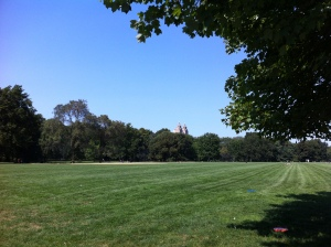 The Great Lawn, Central Park, NYC